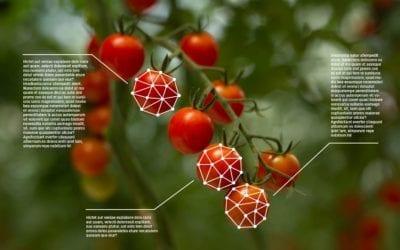 Nový projekt TAČR: Synergická spolupráce s UTB na výzkumu a vývoji